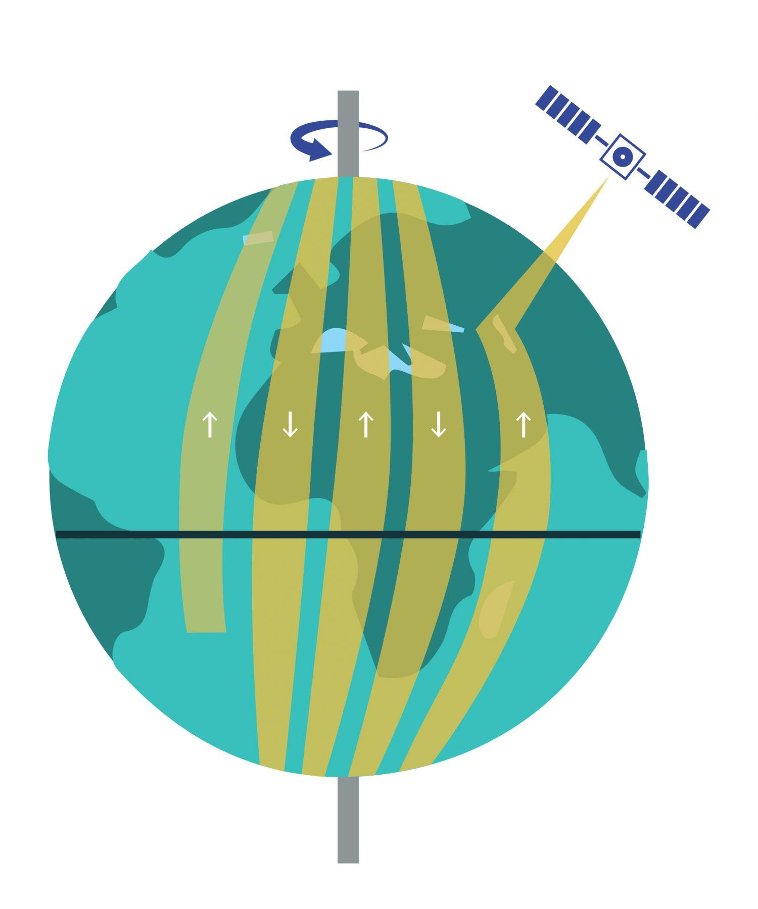 """Área da superfície terrestre medida por um satélite em órbita quase-polar. Cada faixa iluminada corresponde à pegada do satélite numa passagem ascendente (com a correspondente passagem descendente pelo outro lado da Terra).No caso dos satélites em órbitas quase-polares a área da superfície da Terra que é medida pelos sensores é determinada pelo facto de a Terra estar a girar sob a órbita (ascendente ou descendente) do satélite. A área terrestre que o sensor cobre em cada passagem é a sua chamada """"pegada"""". Visto que a Terra vai rodando por debaixo do satélite, a área terrestre que o satélite cobre por dia depende da quantidade de vezes que consegue descrever órbitas completas à Terra, ou seja, depende do período orbital do satélite. Satélites que descrevam várias voltas à Terra no período de um dia sideral, vão ser capazes de cobrir uma maior área da Terra, e as pegadas ficam mais próximas umas das outras. No entanto, até voltarem a fazer medições sobre um mesmo local, i.e., até revisitarem o local, irão demorar mais tempo. A utilização deste ficheiro é regulada nos termos da licença Creative Commons Attribution 4.0 (CC BY-NC-ND 4.0, https://creativecommons.org/licenses/by-nc-nd/4.0/)"""