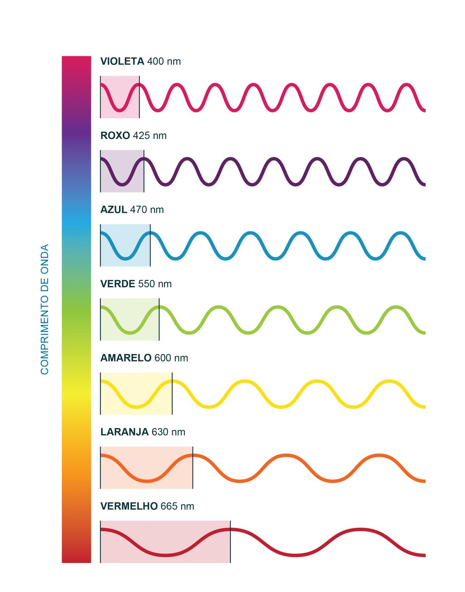 O espectro no visível: o comprimento de onda de cada cor em nm. Existem duas formas de interação da radiação eletromagnética com os constituintes do oceano: por absorção ou por difusão. O comprimento de onda da radiação absorvida ou difundida é que irá determinar a cor do mar. O espectro da luz no visível tem comprimentos de onda que vão desde os mais curtos e mais energéticos, nos violetas e azuis, até aos vermelhos, mais longos e menos energéticos. A utilização deste ficheiro é regulada nos termos da licença Creative Commons Attribution 4.0 (CC BY-NC-ND 4.0, https://creativecommons.org/licenses/by-nc-nd/4.0/)