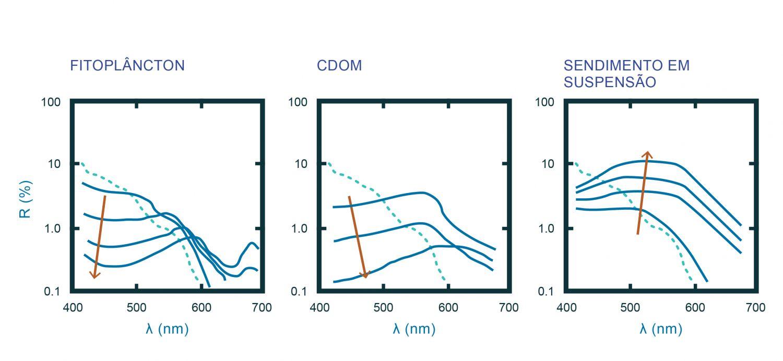 Espectro (linha sólida) idealizado de refletância de: A) fitoplâncton; B) matéria orgânica dissolvida, também designada de substância amarela (CDOM, do inglês coloured dissolved organic matter); e C) sedimento em suspensão (SPM, do inglês suspended particulate matter). A linha a tracejado representa o espectro da água pura. A seta indica o aumento de concentração do constituinte em questão (adaptado de Robinson, 2004). A determinação dos constituintes oceânicos por deteção remota é feita com base na alteração da assinatura espectral da água do mar pura. Assim, o espectro da água do mar pura serve como base para se determinar a presença destas partículas já que a radiação emitida irá ser alterada com a presença dos vários constituintes. Os constituintes opticamente ativos podem ser agrupados, de acordo com a forma espectral, nos três grupos ilustrados em A, B e C. A utilização deste ficheiro é regulada nos termos da licença Creative Commons Attribution 4.0 (CC BY-NC-ND 4.0, https://creativecommons.org/licenses/by-nc-nd/4.0/)